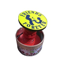 Lilone Friends Forever Pop-Up Round Shape Metal Box Music