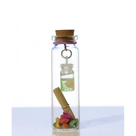 2-In-1 Little Message Bottle
