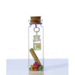 2-In-1 Little Message Bottle
