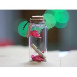 Valentine Gifts Rose Little Message Bottle (4 cm)