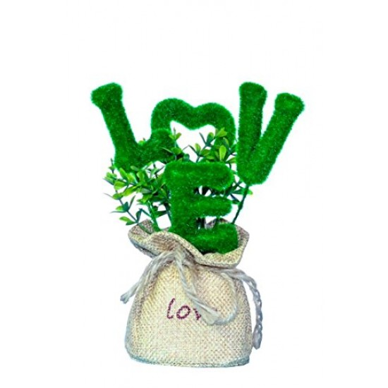 Lilone Valentine Special Love Plant with Pot Gift