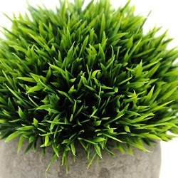 Lilone Artificial Plants Benn Grass in Pot for Home Decor (Green)