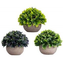 Lilone Mini Artificial Plants Benn Grass in Pot  (Set of 3)