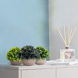 Lilone Mini Artificial Plants Benn Grass in Pot  (Set of 3)