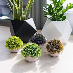 Lilone Mini Artificial Plants Benn Grass in Pot